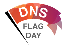 What is DNS Flag Day? (1st Feb 2019)